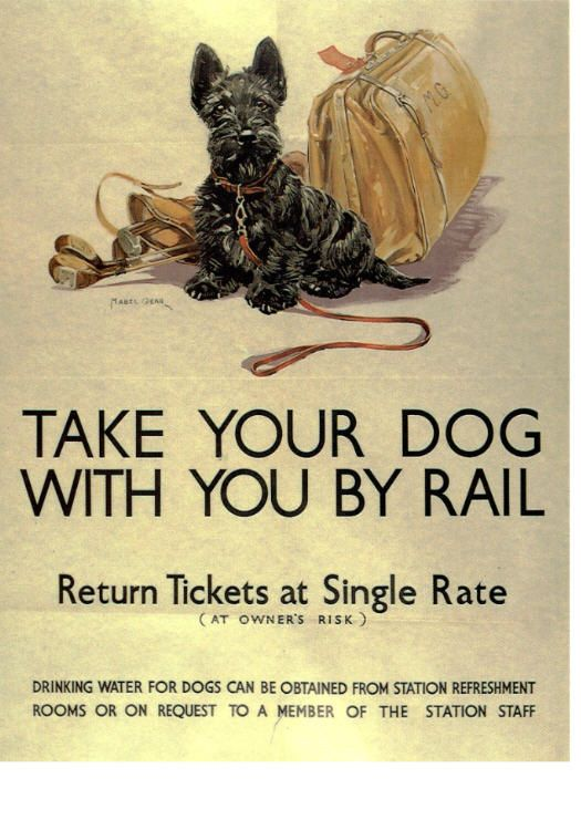 Take Your Scottie For a Train Ride Scottish Terrier Take Your Dog By Rail Vintage Image Cards. $17.20, via Etsy.