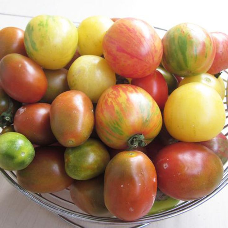 Favorable 100Pcs Rainbow Tomato Seeds Colorful Bonsai Organic Vegetables and Fruits Seeds Home Garden - NewChic