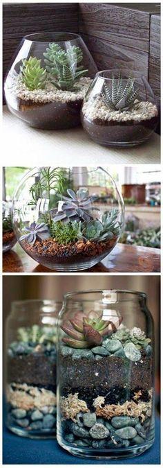 Craft Project Ideas: 5 DIY Terrariums That Bring Beauty