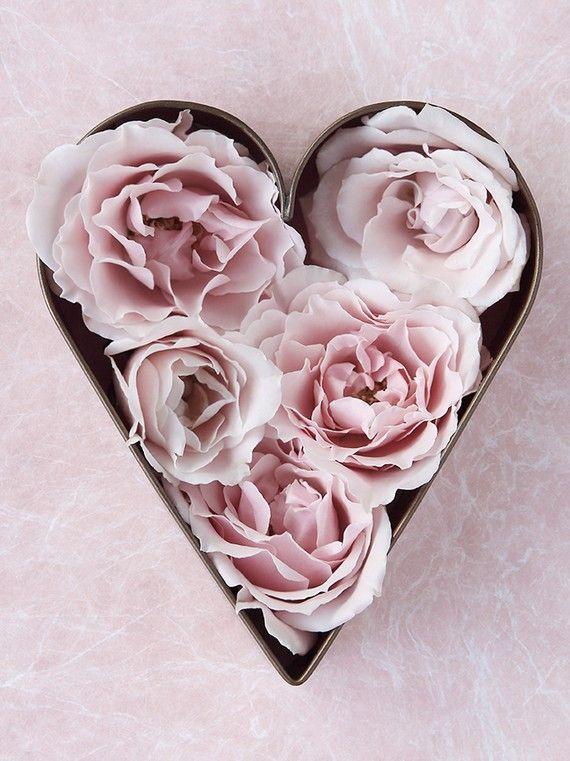 Items similar to Foto de San Valentín de rosas en miniatura en un cortador de la galleta on Etsy