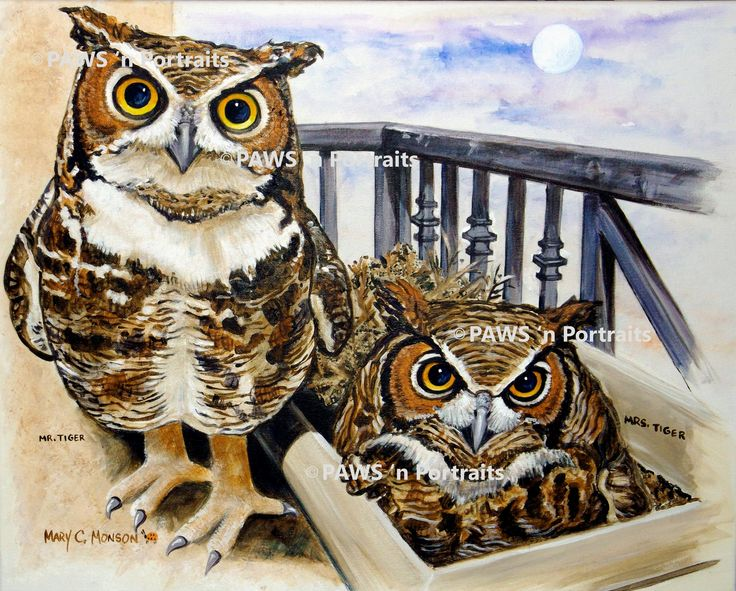SOLD Mr and Mrs Tiger Great Horned Owl pair 2015. All