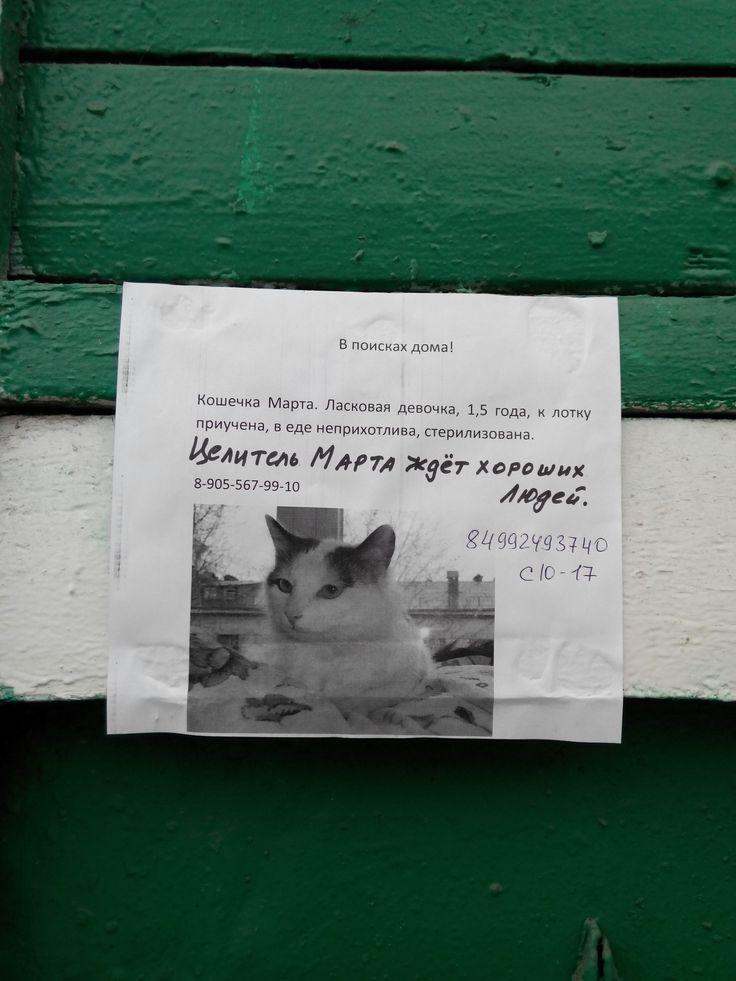 Целитель Марта