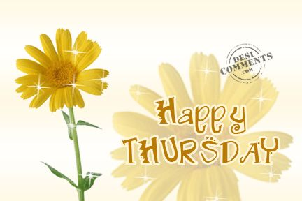 Happy Thursday quote thursday thursday quotes happy thursday happy thursday pictures happy thursday images
