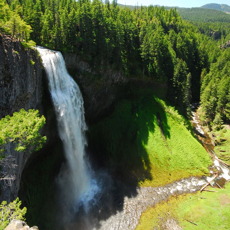 Though relatively unknown, Salt Creek Falls descends 286 feet into a basalt amphitheater base, making it Oregon's third tallest waterfall after Multnomah Falls in the Columbia River Gorge and Munson Creek Falls near Tillamook.