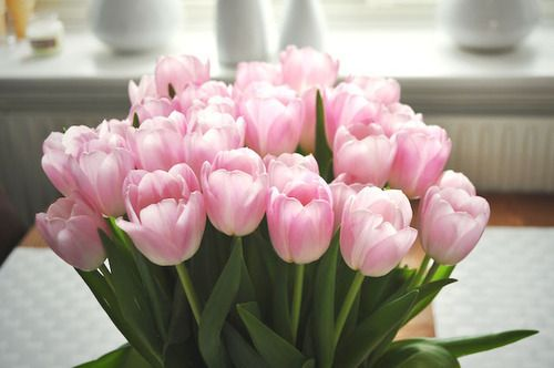 flowers, pink, and tulips kép