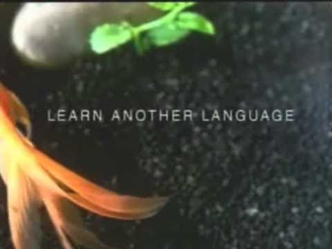 Fish and Cat: Why learn another language?
