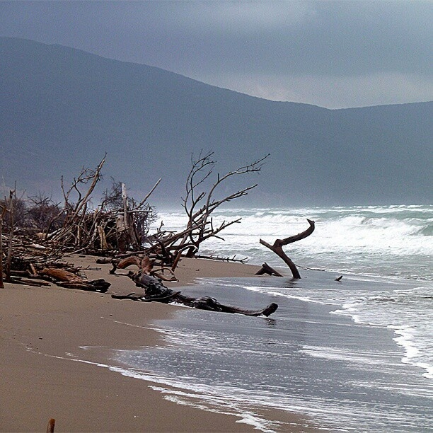 Fabulous photo of Alberese beach Maremma Tuscany in December