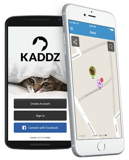 With KADDZ GPS Cat Collar you always know where your cat has just been and you can find kitty easily again if it strays from home.