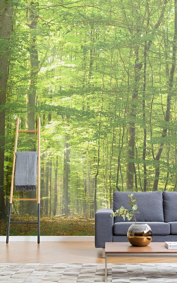 Forest Light Wallpaper Mural Muralswallpaper Lit Wallpaper Nature Inspired Living Room Mural Wallpaper