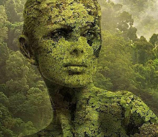 Mondo surreale di Igor Morski.