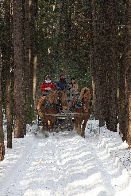 Sleigh ride through the snow!