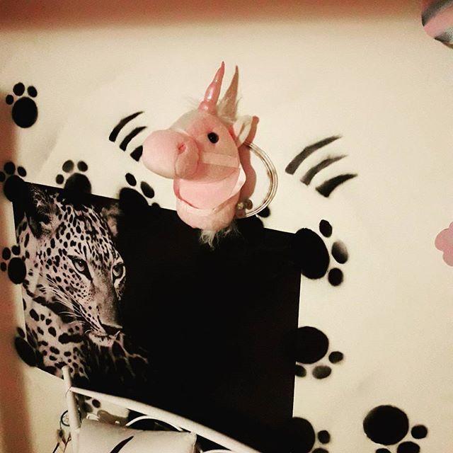 Kot, pies i... jednorożec 💞 #diy #handmade #decoupage #unicorn #decor #homedecore #dodatkidodomu #girlroom #girlroomdecor #pink 🦄