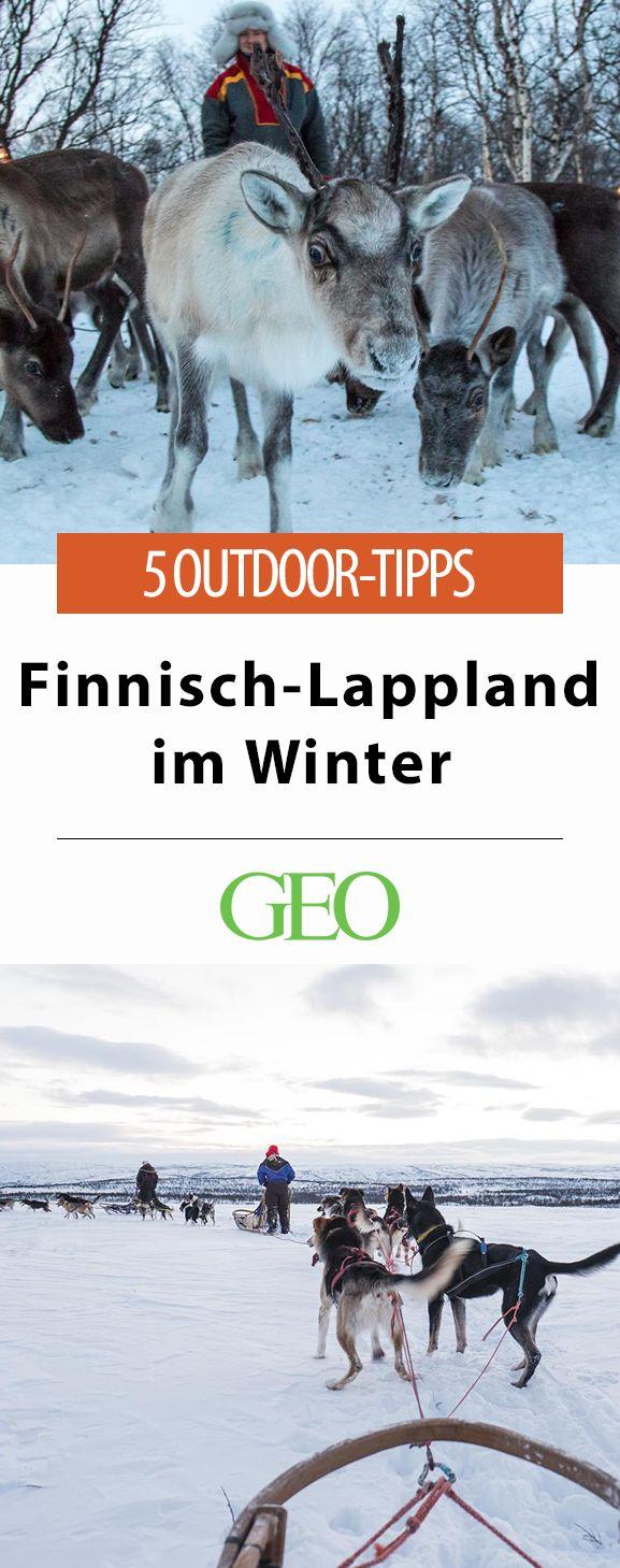 Rentiere und Sami-Kultur, Eisfischen oder mit dem Hundeschlitten in die Wildnis, wir stellen 5 spannende Outdoorerlebniss für Finnisch-Lappland im Winter vor