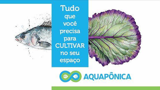 Amissãoda Aquapônica é ensinar as pessoas a produzir seu próprio alimento, promovendo bons hábitos alimentares, mais saúde e consciência a todos.