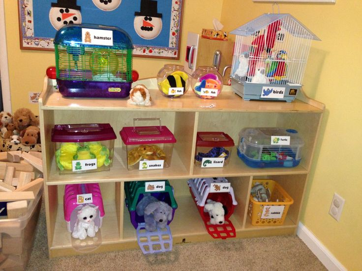 "Preschool Pet Shop! How much fun would the children have with this in your library? What books would you display with your ""pets"" ?  From thoughtfulspotdaycare.blogspot.com"