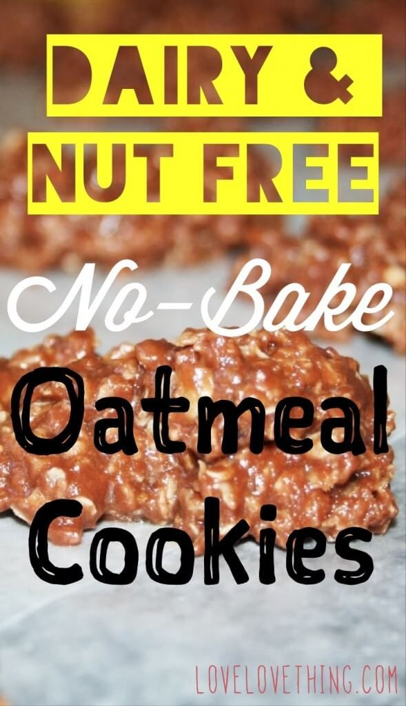 Dairy- and Nut-Free No-Bake Oatmeal Cookies