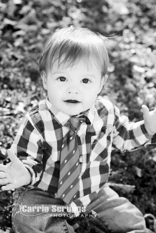 love a little tie for toddler boys pictures
