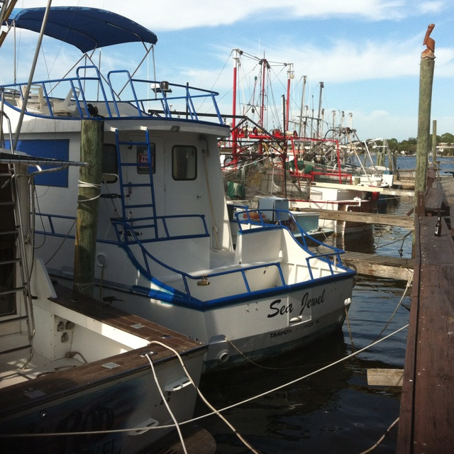 Fishing Boats docked in New Port Richie Fl, Seaside Inn