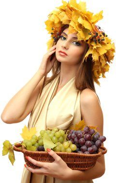 """Grape Seed Oil – A """"Health Food"""" That is Not Healthy at All"""