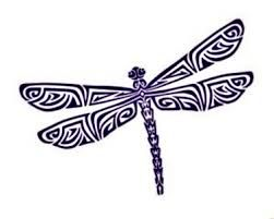 Image result for dragonfly pictures