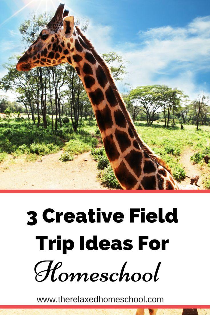 Fun field trip ideas for homeschoolers!