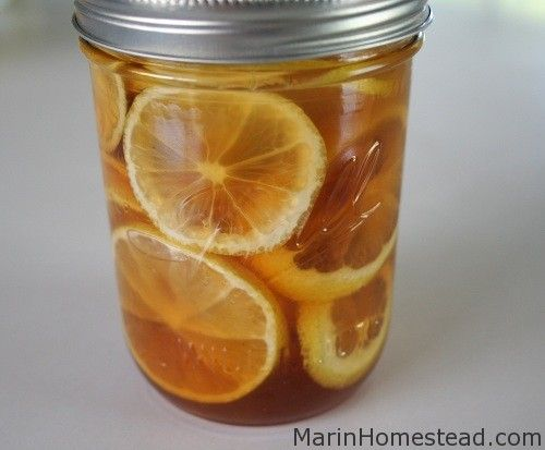 2 lemons thoroughly cleaned and sliced/ 2 pieces of ginger about the size of your pointer and middle finger together sliced into coin size pieces/Honey (about 1 cup-maybe more)  combine all in jar and store in fridge. add spoonful to a mug of hot water during cold season.