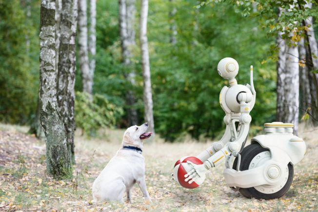 Is It Time to Buy a Robot? | A look at household robots on the market now – and those coming soon. Several companies are even working on robots that will be able to take your dog for a stroll to the park.