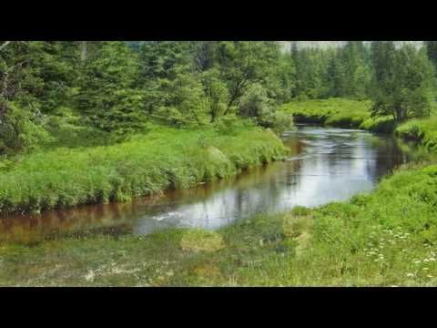 Bedrich Smetana - Vltava/ Die Moldau  (It is the story of the river--starting as a tiny trickle emerging from a spring in the ground, then a stream and finally a mighty river.)