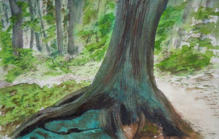Firmly Rooted - Protector of the Sacred Stone  Watercolour & Ink 6.5 x 8.25 inches, framed  This is another of the fascinating tree roots on Wilson Falls Trail in Bracebridge. This one appears to be cradling the stones beneath it