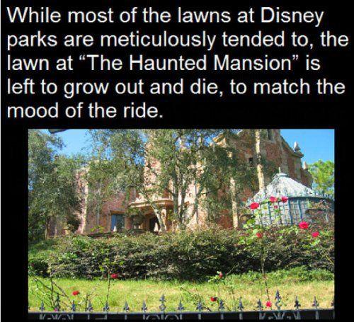 random-Disney-facts-5