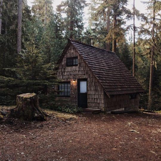 pingl par l 39 atelier des amis sur tiny house pinterest cabanes cabane dans les bois et. Black Bedroom Furniture Sets. Home Design Ideas