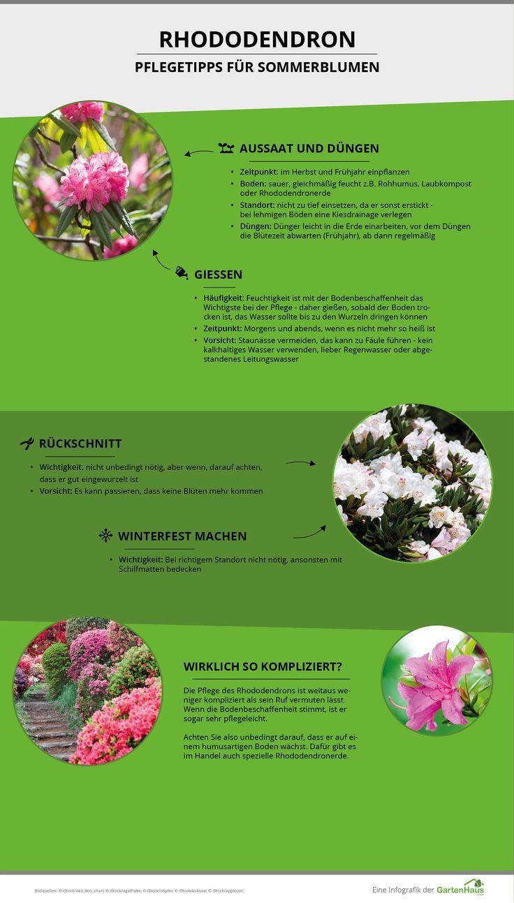 die besten 31 tipps zum anpflanzen im garten bilder auf pinterest, Gartengerate ideen