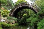 Azie wagen  Gesteentetuin : Boog brug in een Aziatische tuin