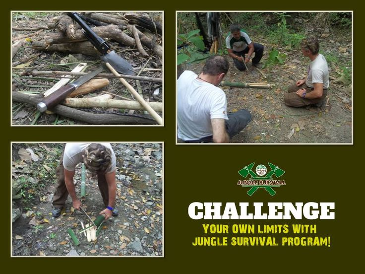 Learn great techniques to help you endure the harsh environment of any jungle in the world by getting trained by experts at the #JungleSurvivalProgram offered by Bandhavgarh365 at one of the most dense and dangerous forest in India. Book Here: http://www.bandhavgarh365.com/jungle-survival-activity/  #junglesurvival #wildernesssurvival