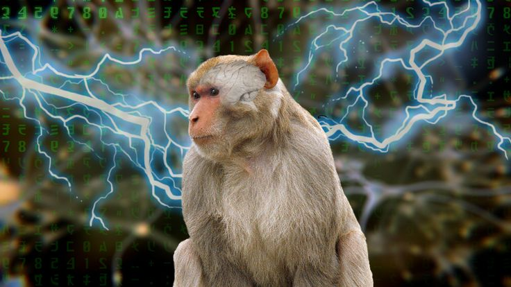 "Scientists ""Inject"" Thoughts And Information Directly Into A Monkey's Brain  Brains are very strange things. Despite their sense of self-importance, they're really just a bunch of fiddly wiring, meaning all our thoughts and perceptions are just electro-chemical reactions.  Exploring that idea, two scientists and two rhesus monkeys have shown how it's possible to ""inject information"" directly into the brain's premotor cortex using a light zap of electricity.  #MonkeyBrain…"