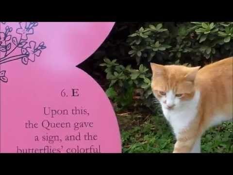 ▶ Eine Katze im Märchen Park der San Marco Hotels - YouTube