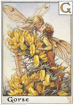 The Gorse Fairies by Cicely Mary Barker