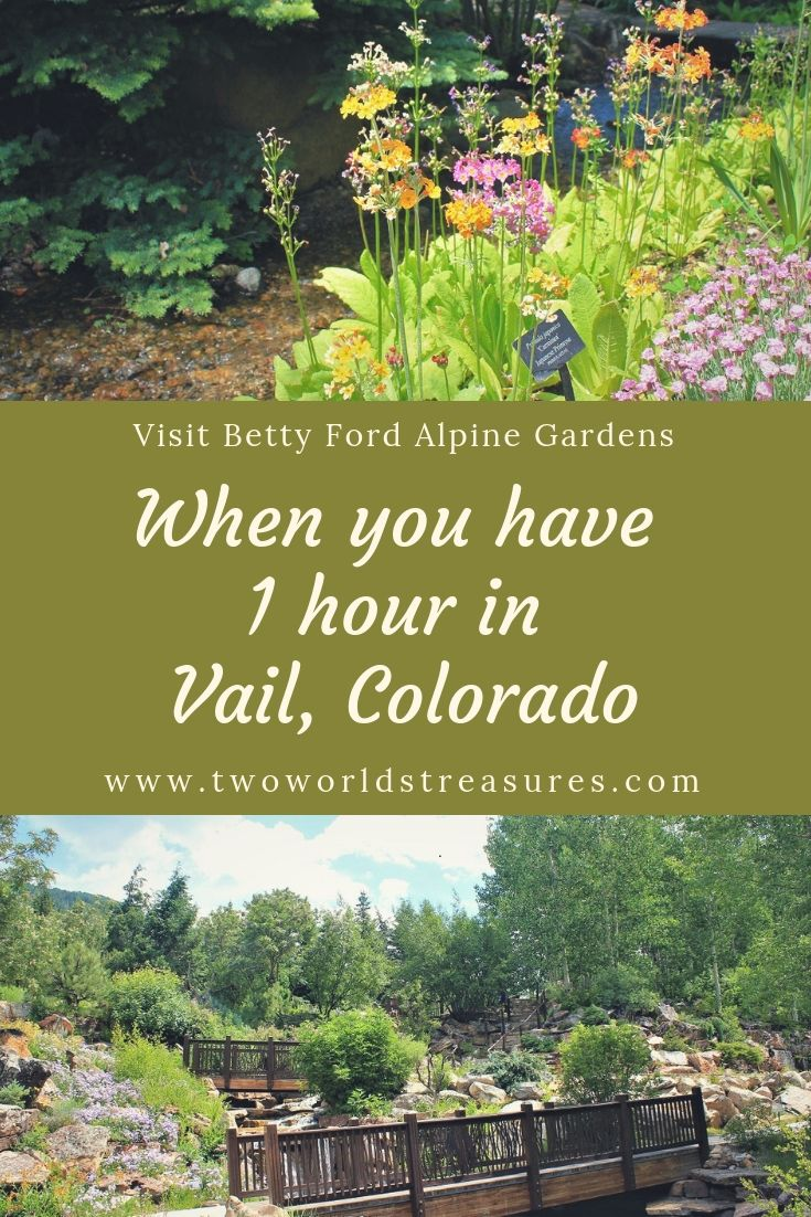 One Hour At Beautiful Betty Ford Alpine Gardens In Vail Colorado