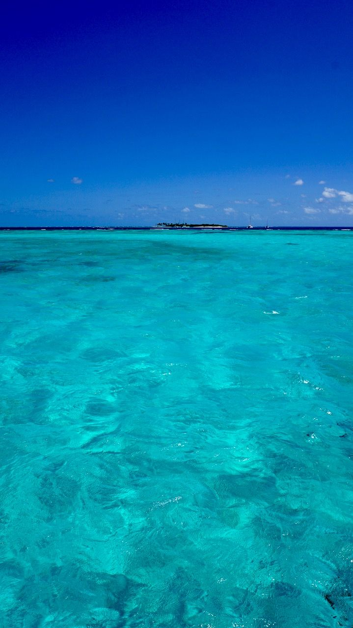 Let's jump in. Photo: Tobago Cays in the Grenadines