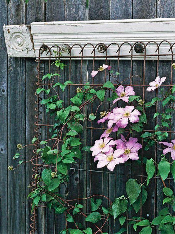 25+ Best Ideas About Rankgitter On Pinterest | Tomatenhaus Selber ... Garten Sichtschutz Deko Ideen 18