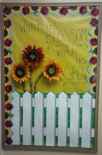 Fall Bulletin board- Sunflowers
