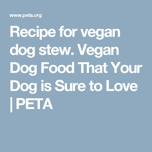 best 25 vegan dog food ideas only on pinterest dog