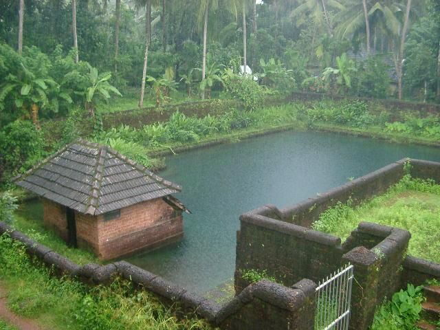 Image result for children sitting on the steps of pond in kerala