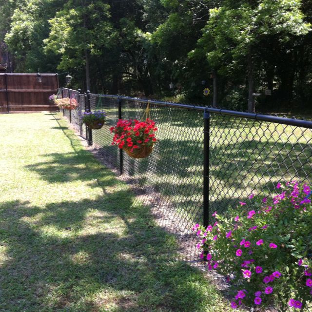 My hanging baskets on the chain link fence.  Adding more soon!