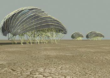 Strandbeest: Installation, Theo Jansen S, Kinetic Art, Artist, Architecture, Design