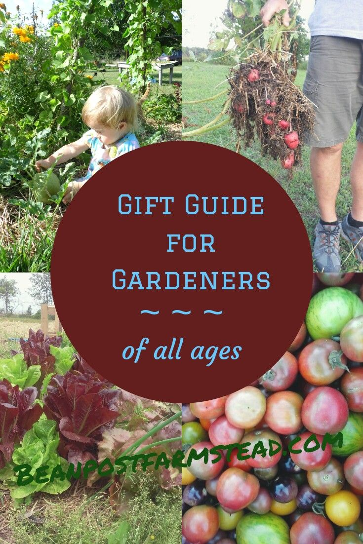 Gifts Gardeners Will Love Ideas For Of All Ages