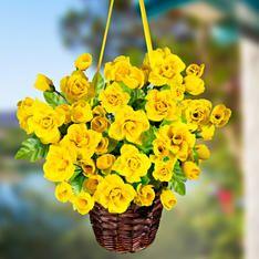 Závěsný košík Žluté růže