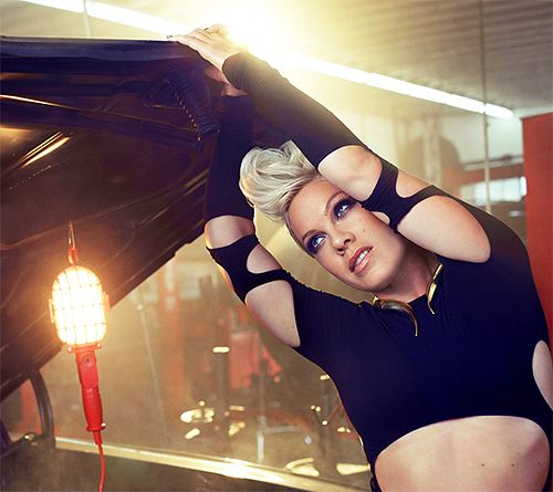 105 best ♫ P!nk ♫ images on Pinterest Singer, Artists and Beth - free p&l template