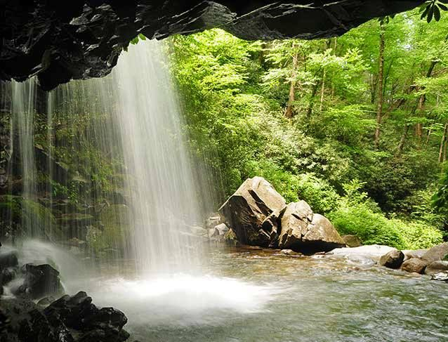17 Best Images About Hiking In The Smokies On Pinterest