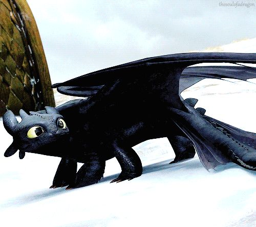 my gifs httyd toothless httyd gifs GOTNF httydedit 4000 notes dreamworksedit thehiccupnetwork i managed to fit in so many frames ahhh 40 i think